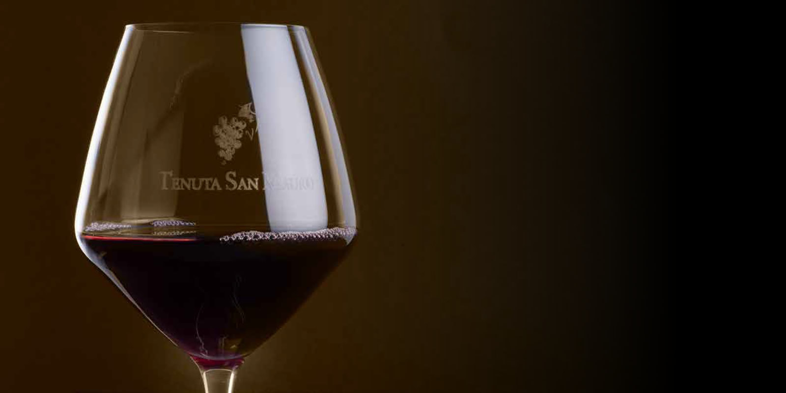 imagine...<br />wine as our passion